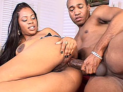 Ebony chick with big boobs and hairy beaver wild fucked