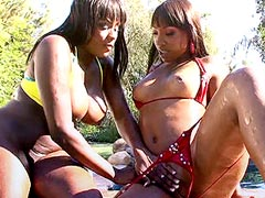 Two ebony bitches suckings black cocks and getting fucked in groupsex