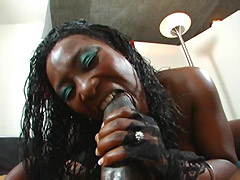 Chubby ebony babe suck black monster cock and have hard cunt fuck