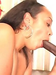 Milk chocolate cock lover gets fucked hard