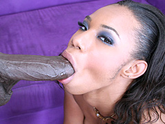 Pleasure Bunny blows stiff black cock till she gets fucked