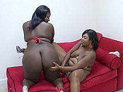 Ebony BBWs explore their every fold. Chyna White & Lady Carmela