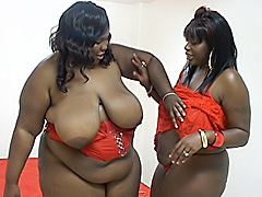 Fat ebony chicks licking hot snatch. T Sparks & Scented Kisses