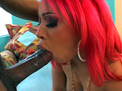 Pinky is feeling horny and wants to play and so does the..