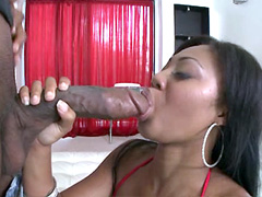 Blowjob review, video, movie, tube, trailer
