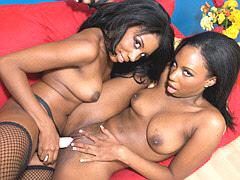 A pair of delicious ebony lesbians..