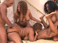 Is it dirty orgy involving superb ebony womans, such as..