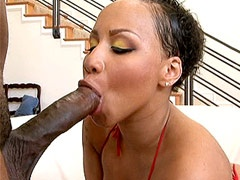 Ebony babe gives blowjob and gets hot black cock in a wet pussy
