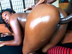 Curvy ebony model Aryana Starr pussy fucked from behind
