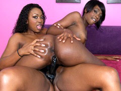 horny ebony lesbian Nov 2016  Get hard mp4 porn videos Horny Ebony lesbians use a public shower to have a  place for their hot lesbian pussy licking.