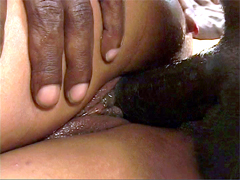 This is perfect when huge black rod drills wet black pussy of sexy chick Cocoa