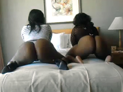 Two fat black sluts exposing their big asses on the bed