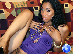 Sexy black shemale Ashley hunter strip tease at Black TGirls